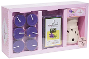 Ampliscent Candle / Wax Melt Gift Set - [English Lavender]